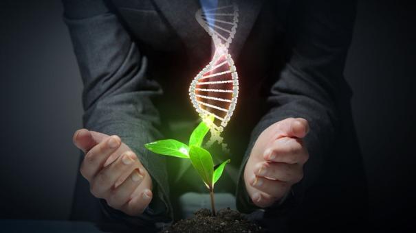 natural-sciences-course_106450_large