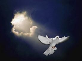 Holy_Spirit_-_Sky_Dove