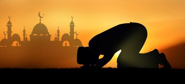 islam-fact